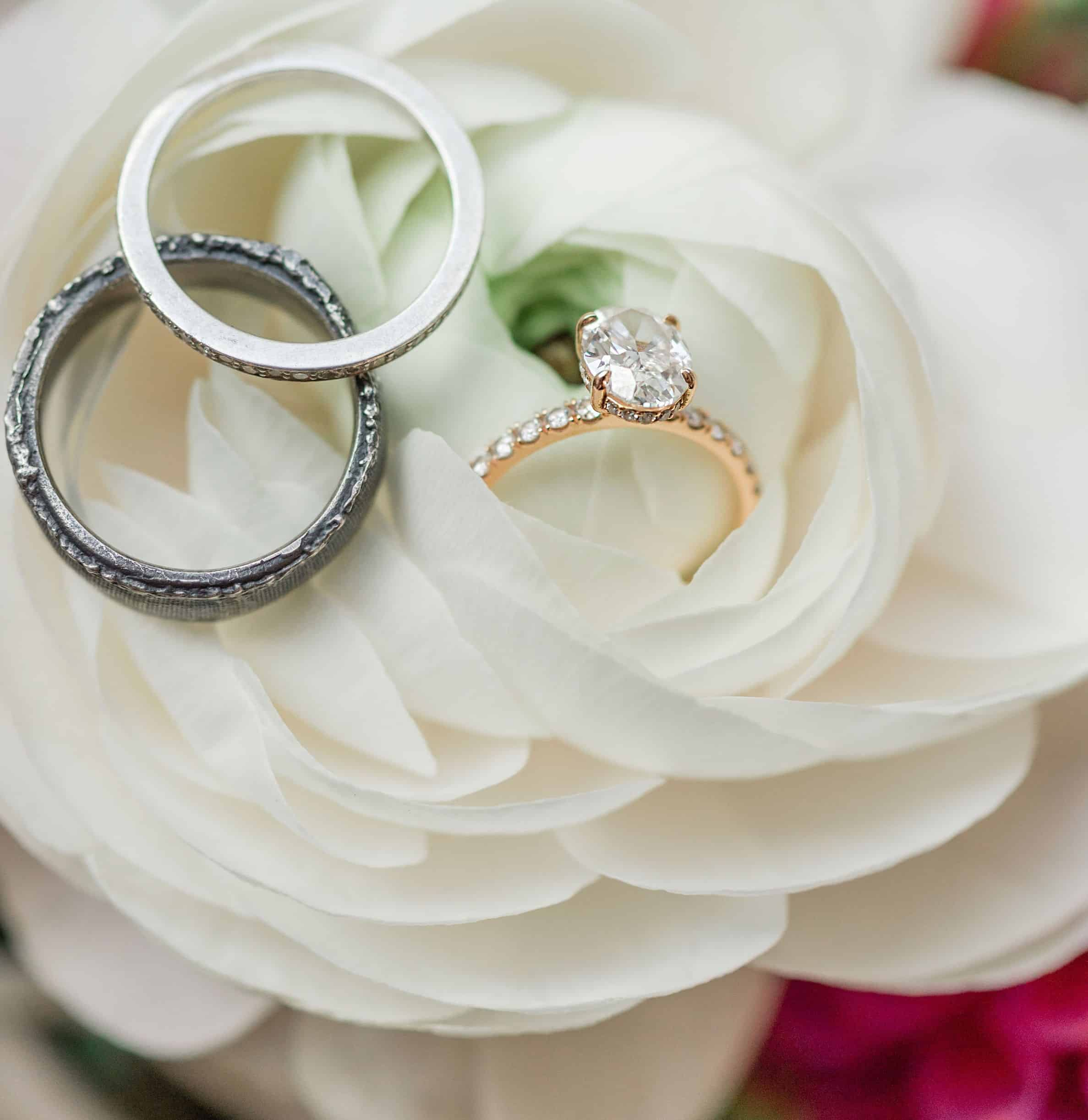 wedding rings resting on a white rose